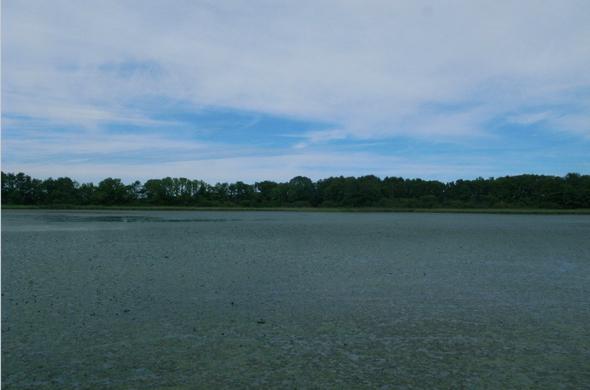 ペケレット湖園